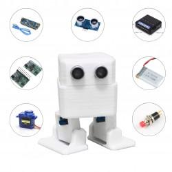 Kit robot bailador DIY FRAN